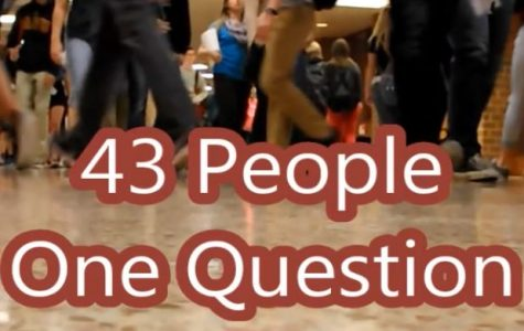 43 People, 1 Question HHS