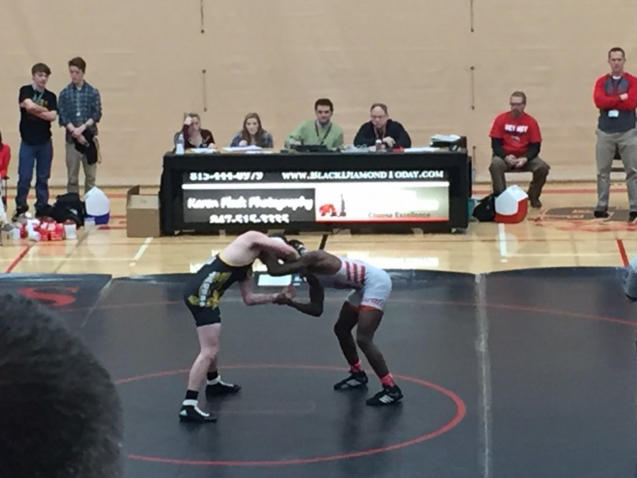 Sophomore+Justin+Allen+grapples+with+his+opponent.