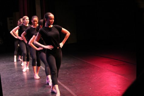 Orchesis Reflections