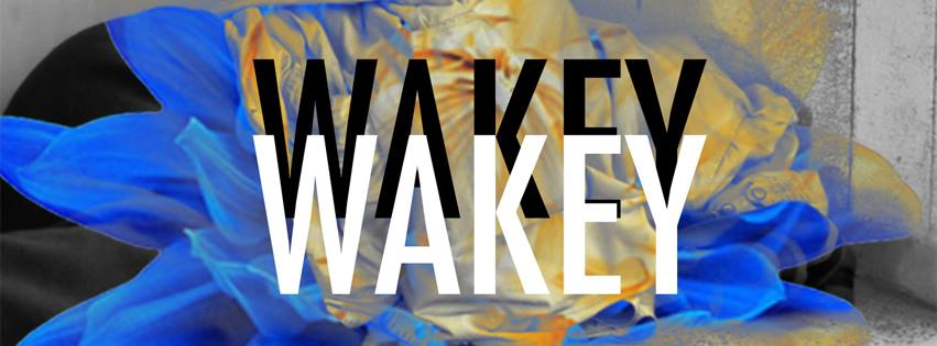 Wakey+Wakey+has+many+songs+that+strike+a+chord+with+listeners+%28www.facebook.com%2Fwakeywakeyband%2Fphotos%2F%29.