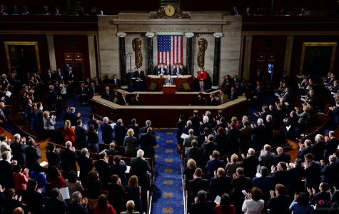 United States Midterm Elections: Winners and Losers