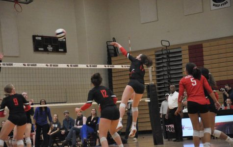Volleyball Sectionals Semifinals Photographs, 10.29.18 – Sydney Laput