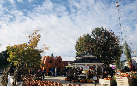 The Fall Festival is here and it will be