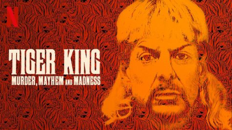 "Delve into the murder and madness of ""Tiger King"""