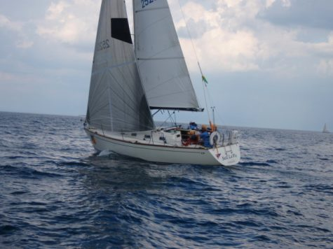For the love of sailing