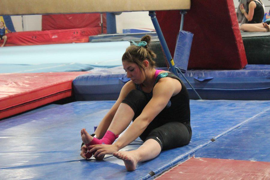 Aubrie Purtell: gymnast extraordinaire