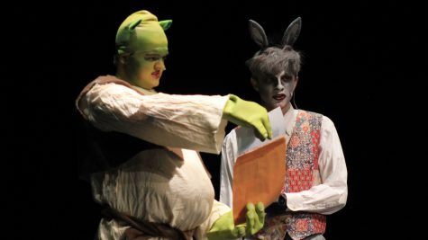 """""""Shrek the Musical"""" gallery"""