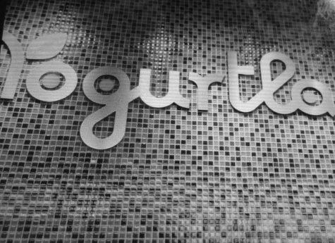 Yogurtland restaurant review