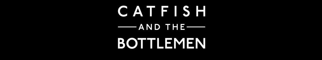 Catfish and the Bottlemen logo for their new album (Courtesy of catfishandthebottlemen.).