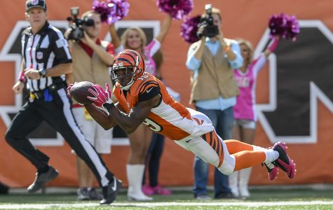 Cincinnati Bengals wide receiver Brandon Tate (19) stretches out for a 55-yard touchdown pass during the third quarter on Sunday, Oct. 4, 2015, at Paul Brown Stadium in Cincinnati, Ohio. (David Eulitt/Kansas City Star/TNS)