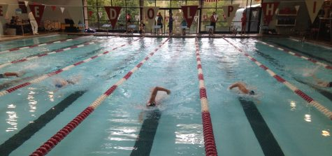 Huntley boys swimming ends season with sectionals loss