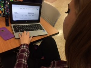 The SparkNotes webpage is easy to use and useful for comprehension. (Photo  courtesy of S. Biernat)