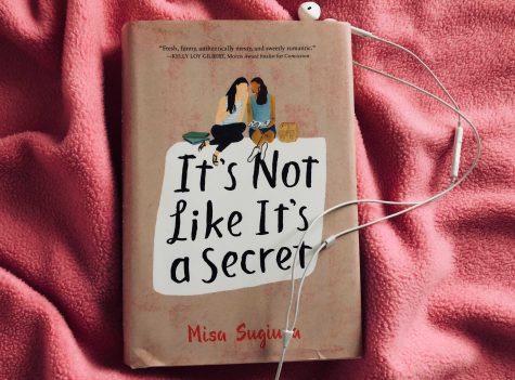 A not so ordinary romance novel