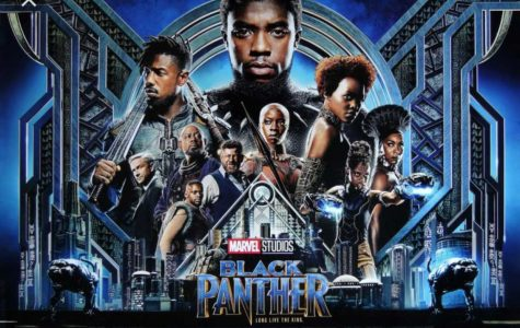 The Black  Panther Controversy